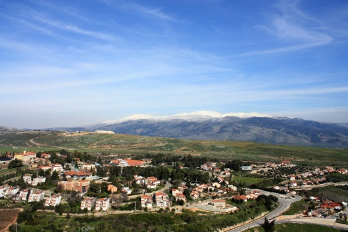 Metula with Mt Hermon