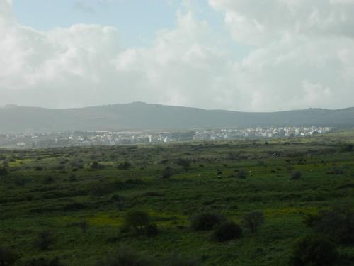 Lebanese town of Arab el-Luweize