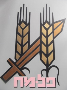The Palmach logo