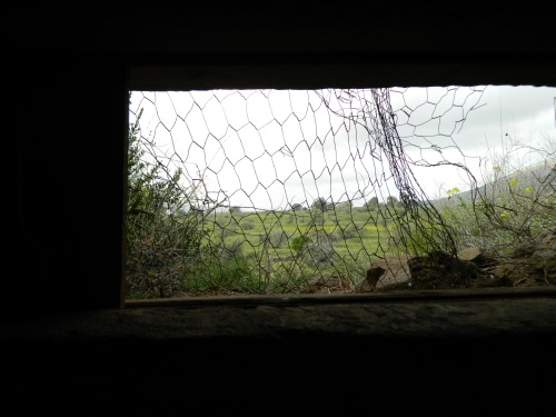 The view from the bunker