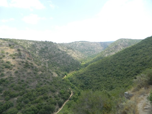 The trail down below, running along Nachal Kziv