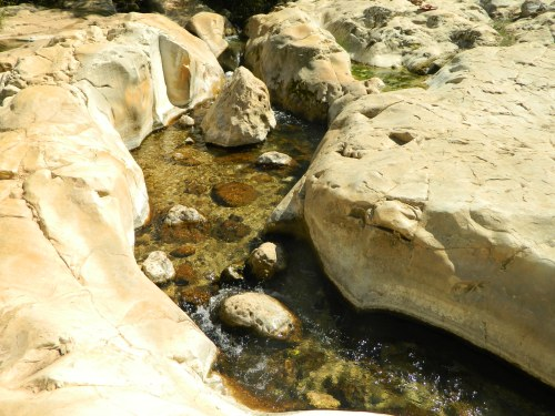 The spring water flowing through the rock