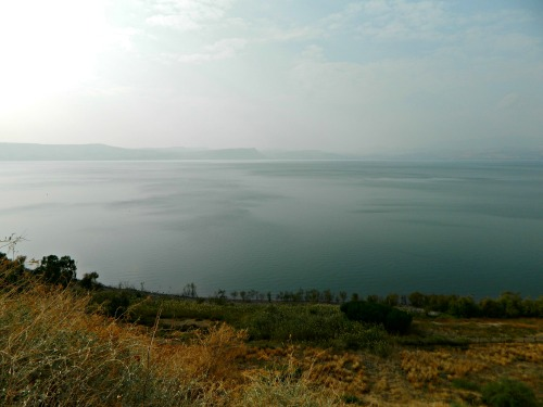 The Kinneret from a Golan outlook