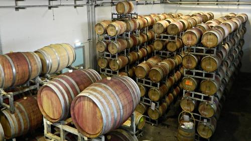 Barrels of aging wines
