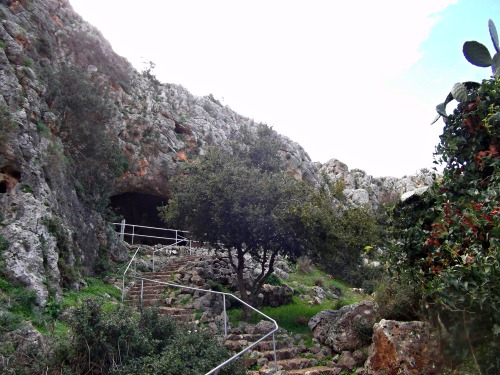 Looking back at the Gamal Cave