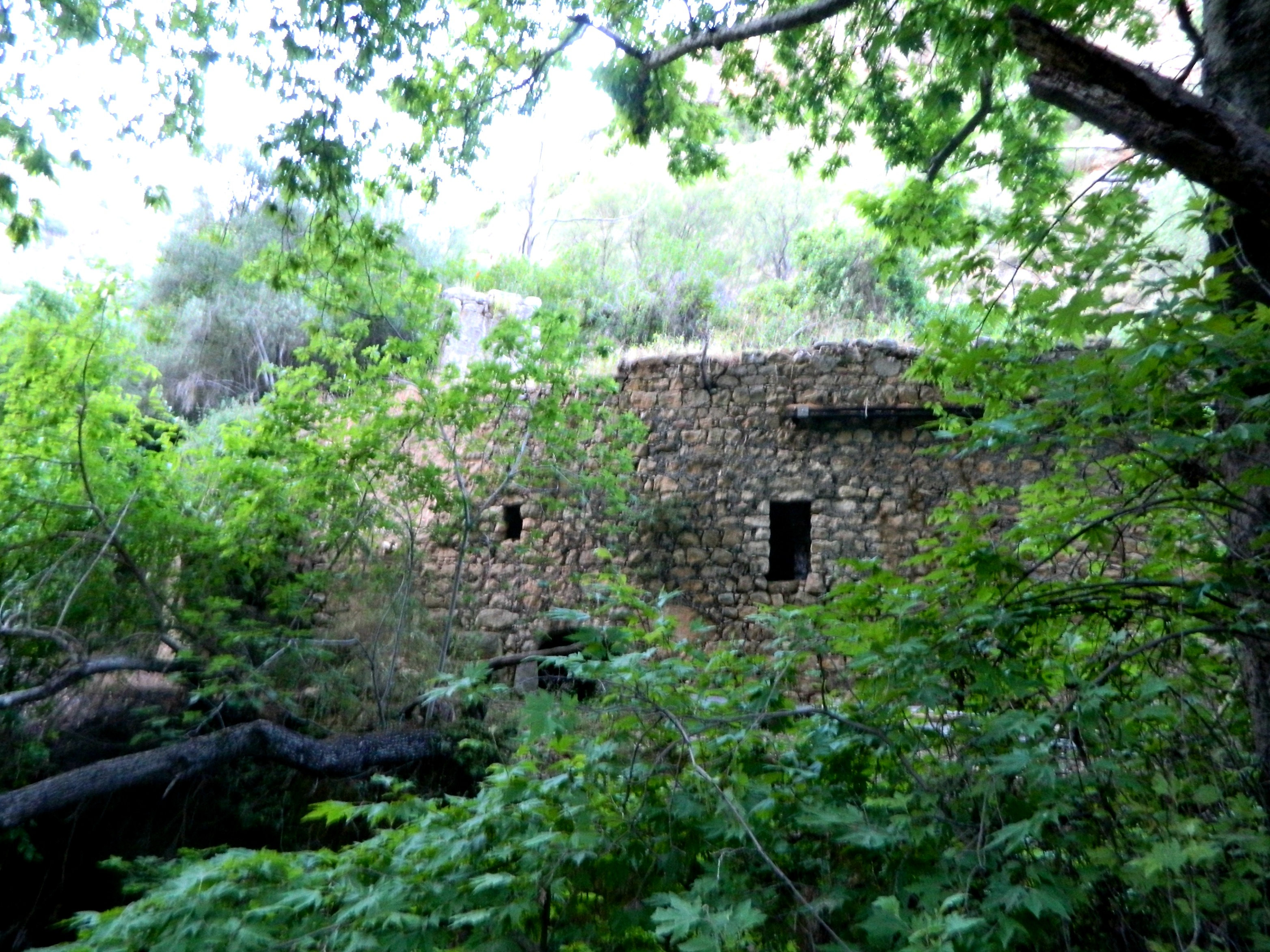 The Ruins Stream