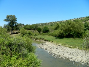 The Jordan River gently flowing by