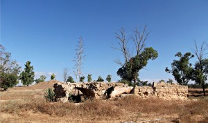 Mador Ruins