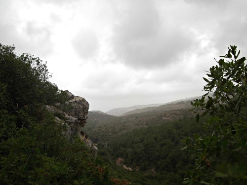 Misty mountain scenery