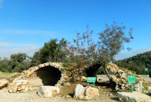 Hamama Ruins