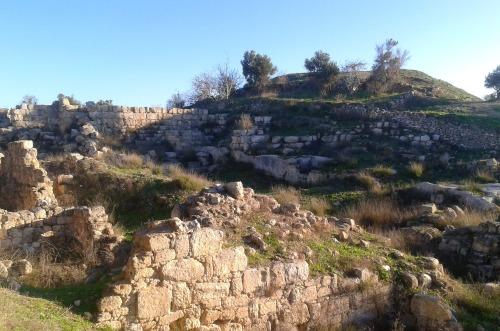 Ruins of the Israelite palace