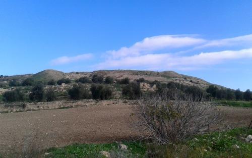 Tel Dotan