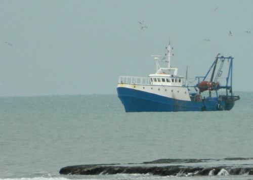Fishing boat off the coast