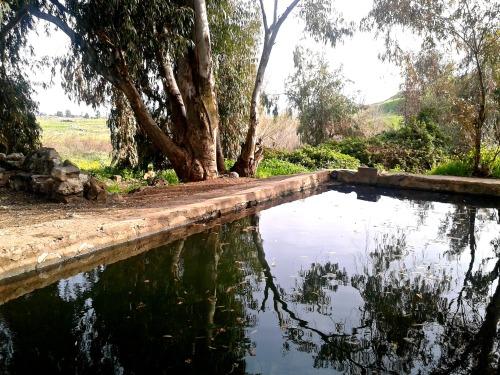 Juchader Pool