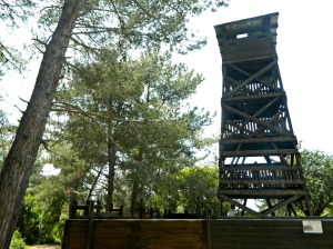 A tower and stockade