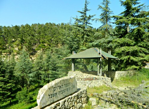 KKL-JNF's Cedar Lookout