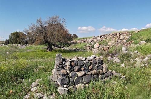 Old Arab grave
