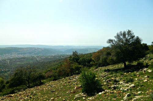 View from Mount Adir