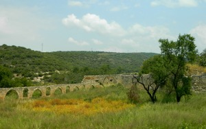 Ga'aton ruins overgrown with grass and wildflowers