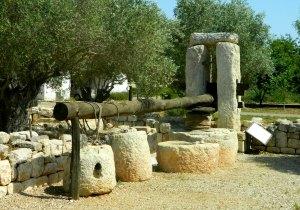 Zabadi olive press