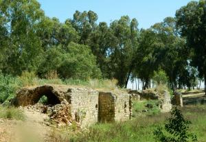 The al Mir flour mill