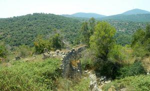 Overgrown ruins of Bar'am
