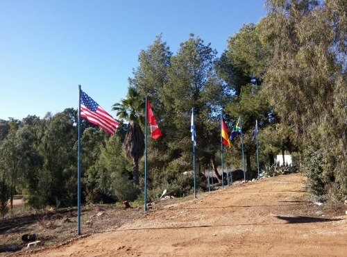 Foreign flags flying at the Tree Planting Centre