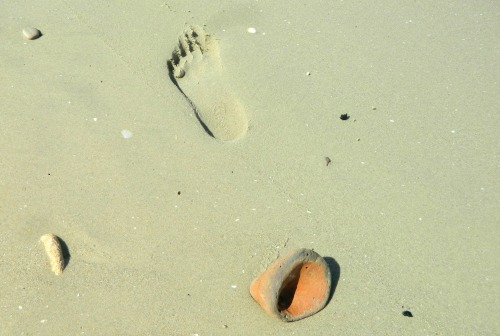 Amphora base and a footprint in the sand