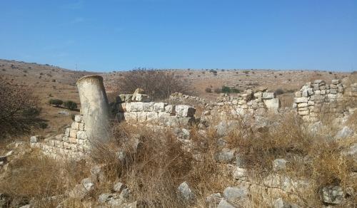 Ruins amongst the dead vegetation