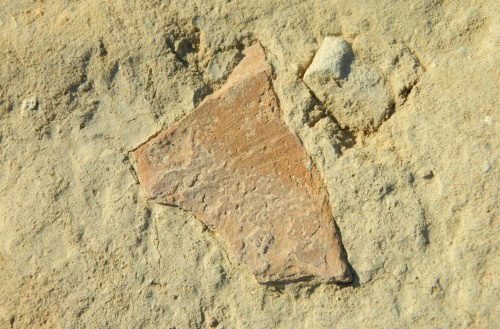 Potsherd stuck in the dirt