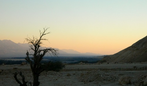 Evening in the Arava