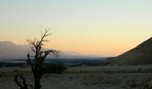 Evening in the Arava