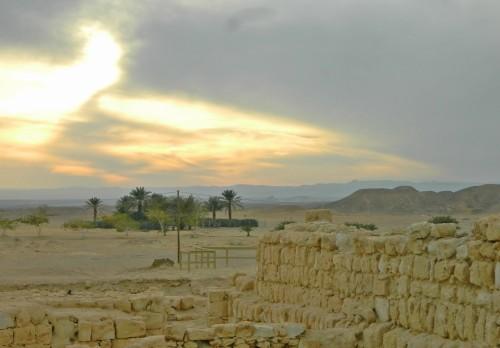 Tamar the desert fortress