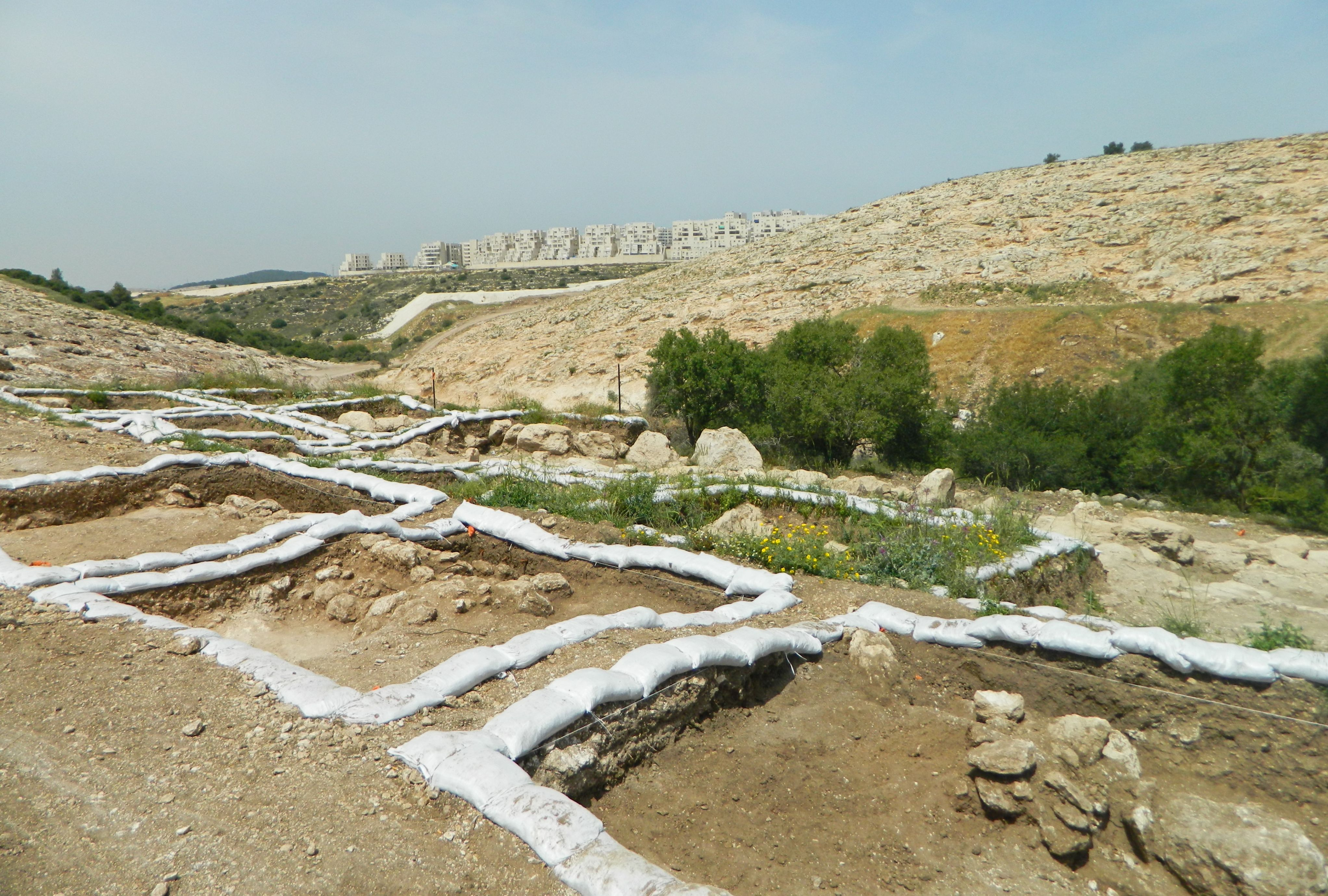 Shemesh Word: University Trip: Tel Gezer & RBS Dig