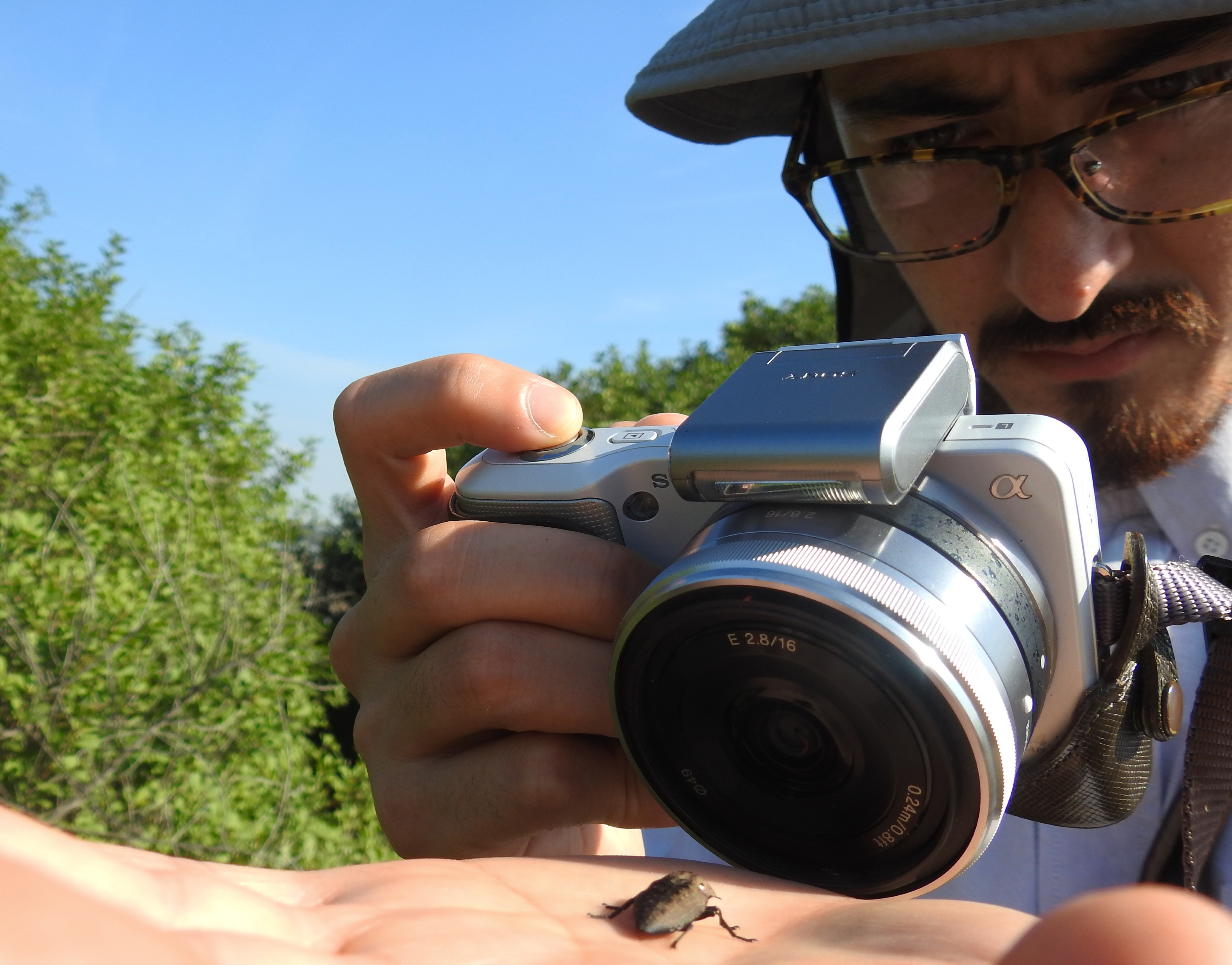 Adam photographing the prized jewel beetle
