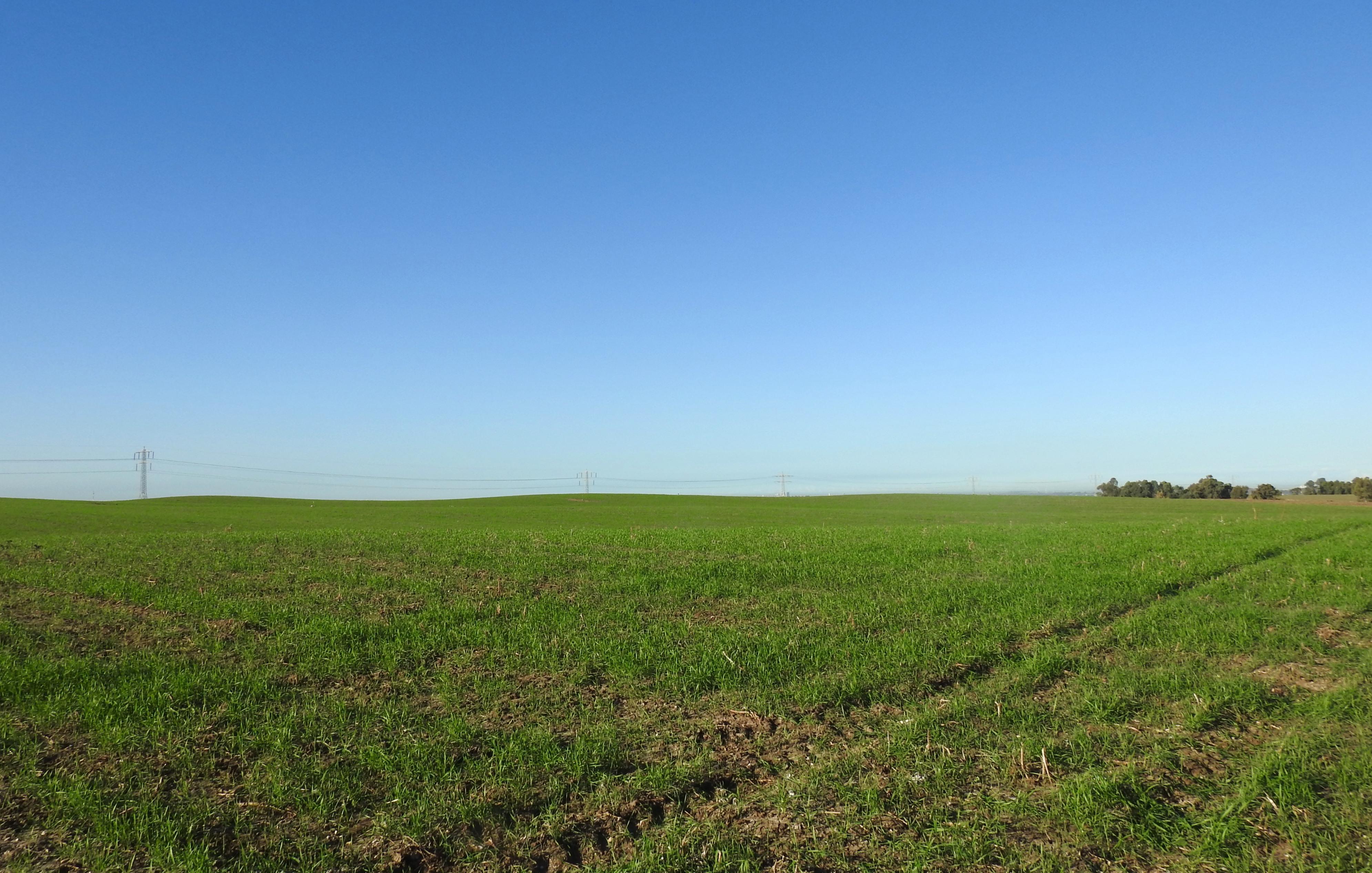 Green fields outside Hulda