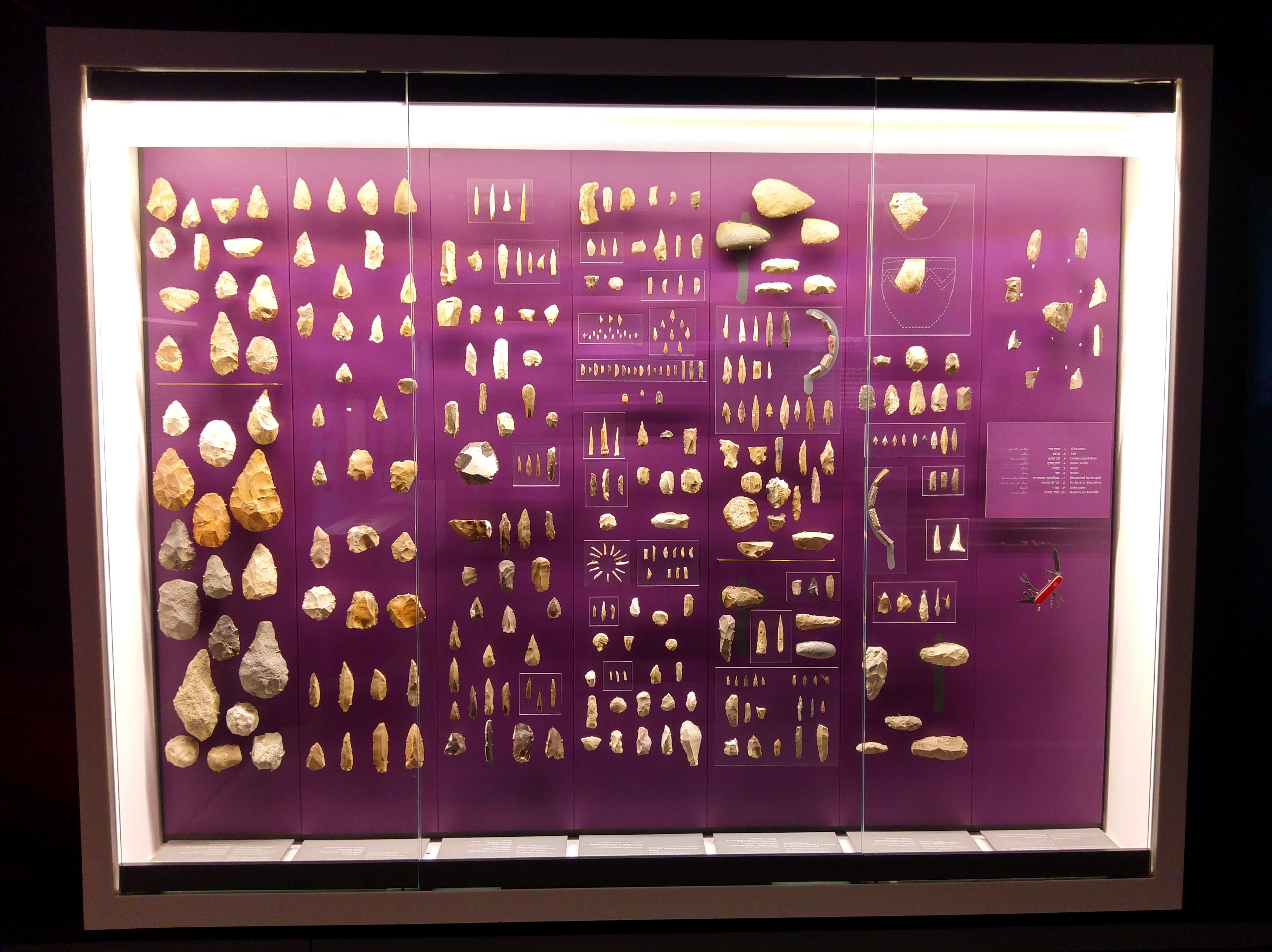 Tools of the early humans