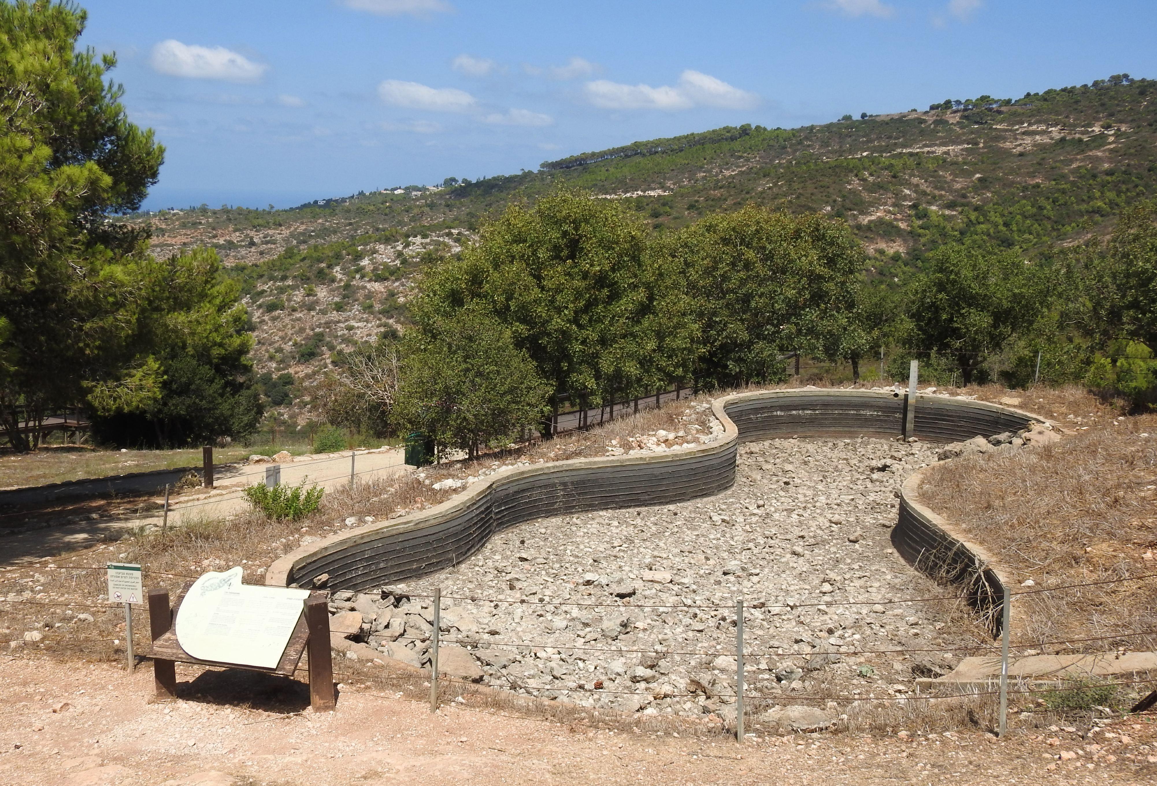 The dried fire salamander breeding pool